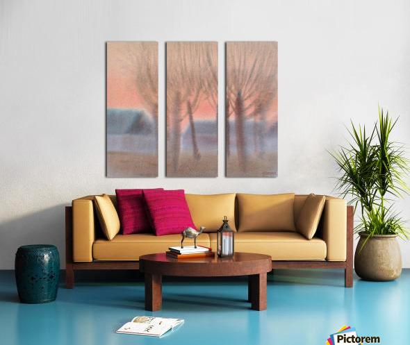 DSC_1009 Split Canvas print