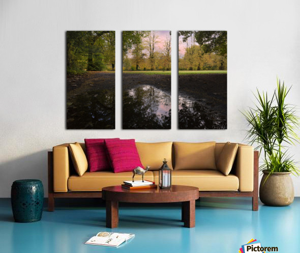 Autumn reflections in a field Split Canvas print