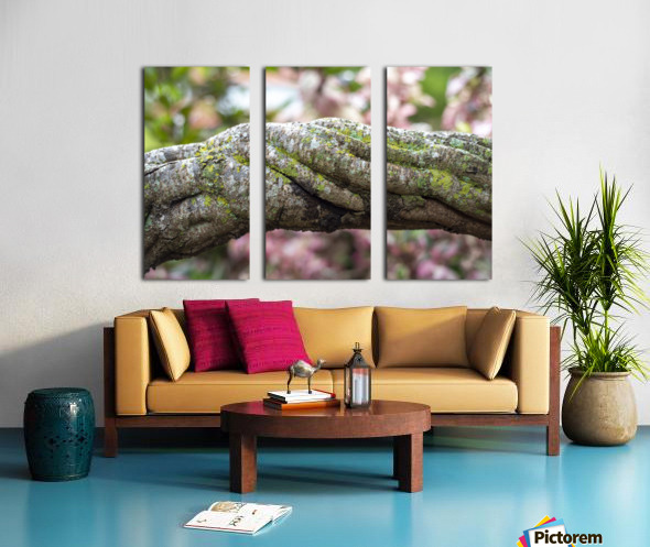 Force within Split Canvas print