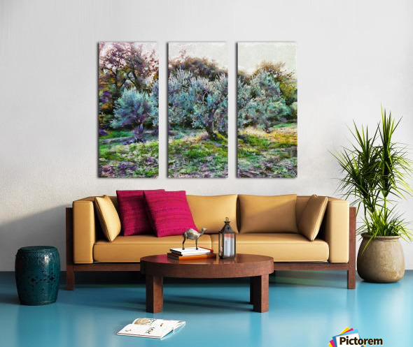 Colorful Olive Grove Split Canvas print