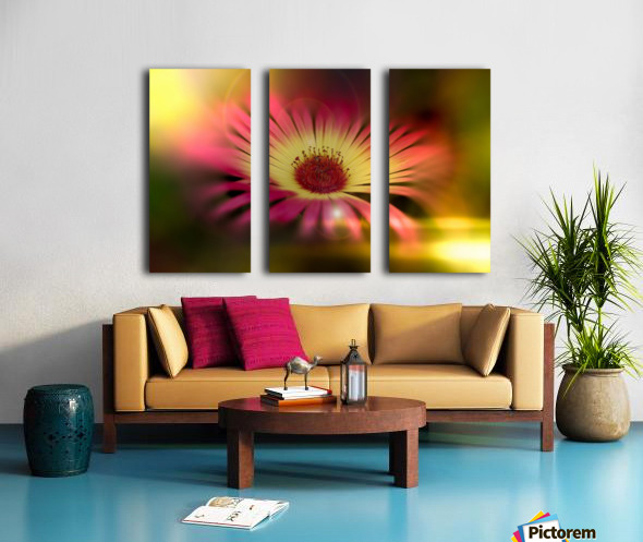 little sunshine Split Canvas print