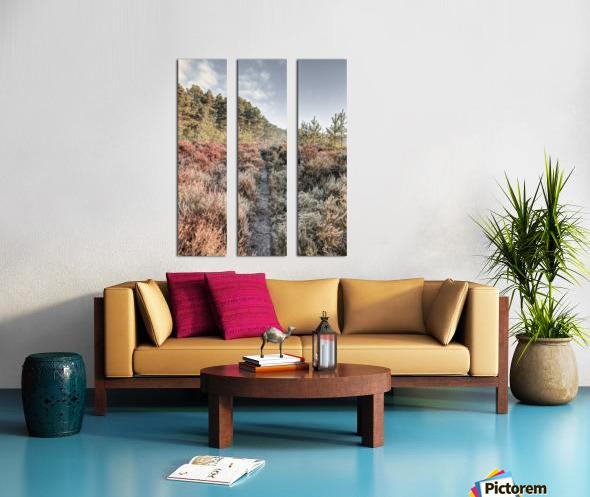 Autumn forest Split Canvas print