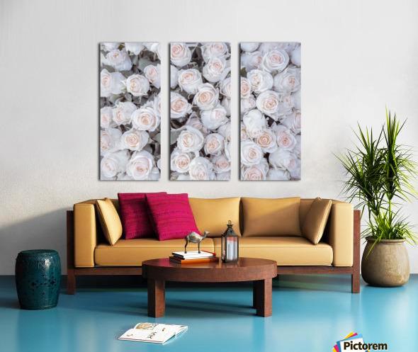Full frame of Roses Split Canvas print