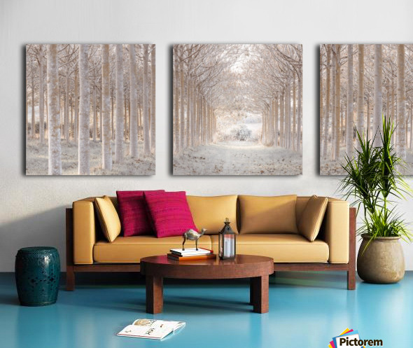 Winter forest Split Canvas print