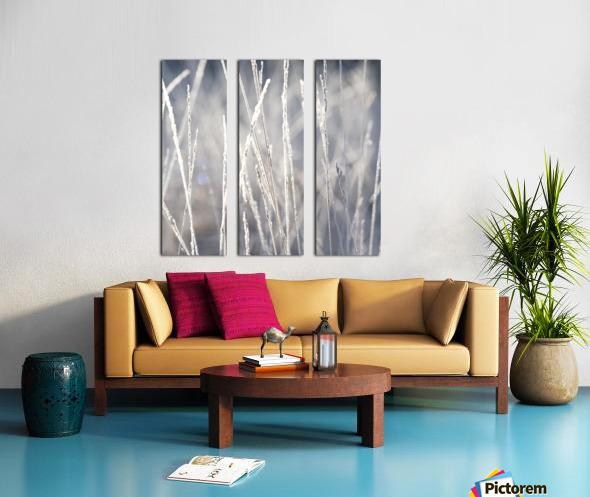 Frost on Grass Split Canvas print