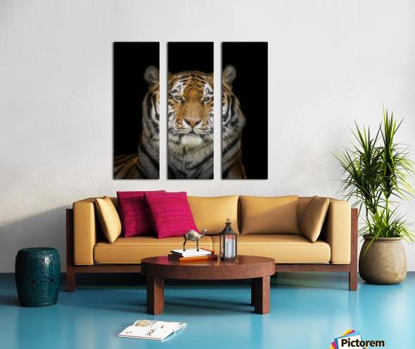 Tiger face Split Canvas print
