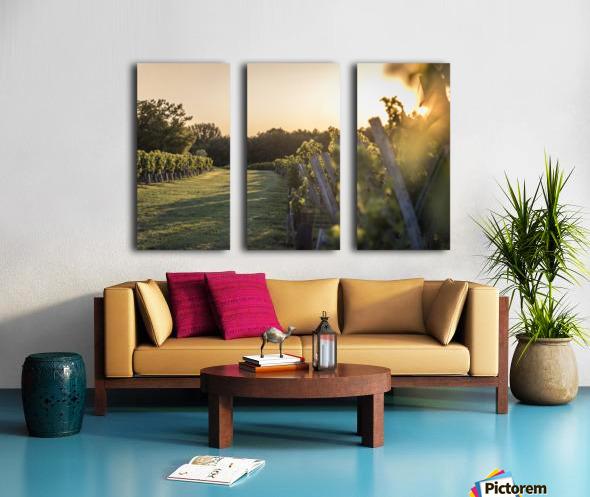 Lussac Split Canvas print