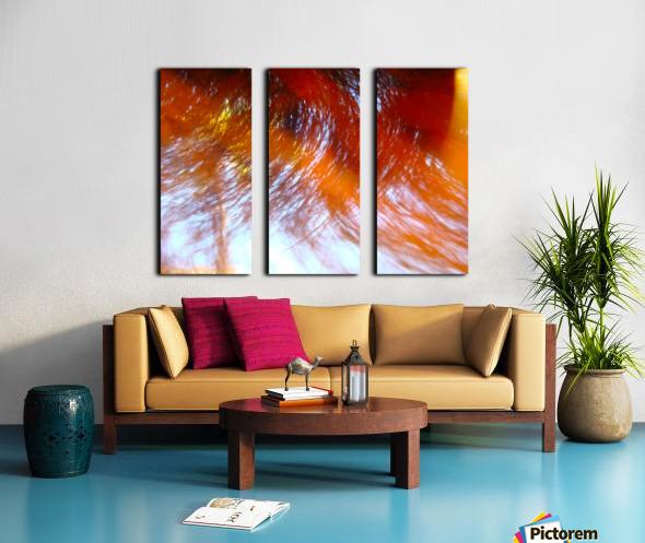 Reflections Split Canvas print