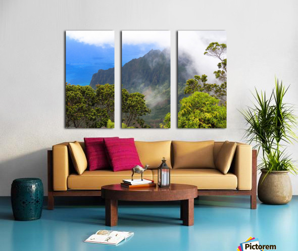 Wild Kauai 3 Split Canvas print