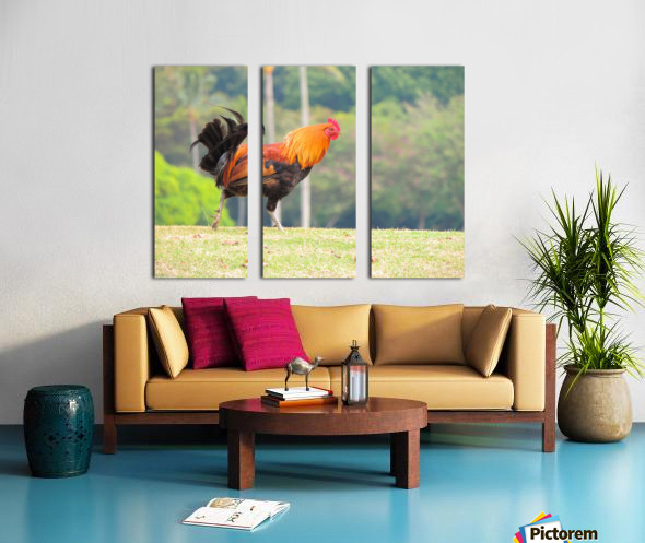 Red Rooster Split Canvas print
