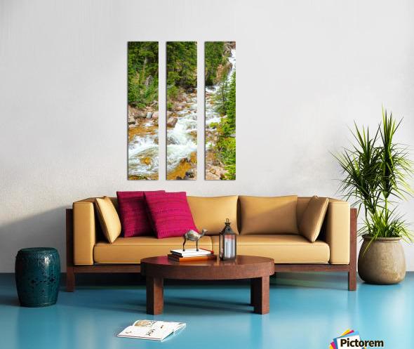 Spring Runoff Chipmunk Split Canvas print
