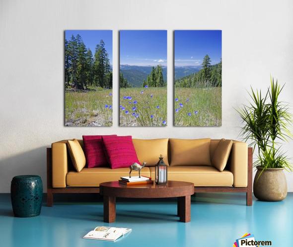 Sierra Nevada in Spring 7 of 8 Split Canvas print