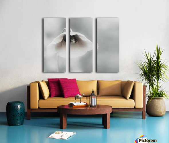 Ephemeral Beauty Split Canvas print