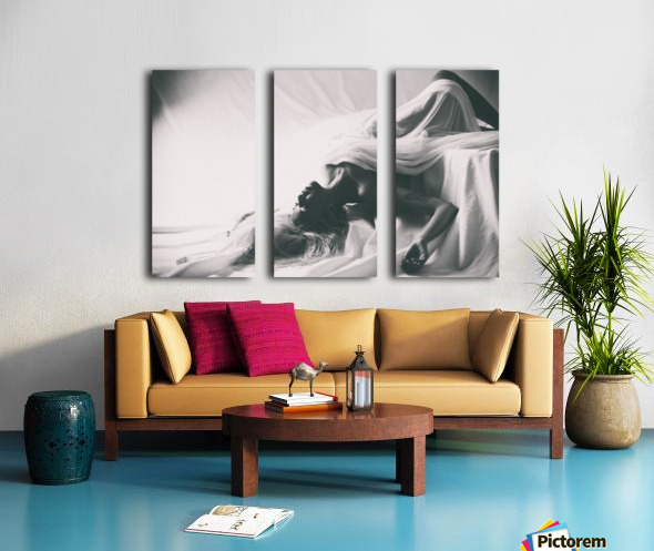 Dreams Split Canvas print