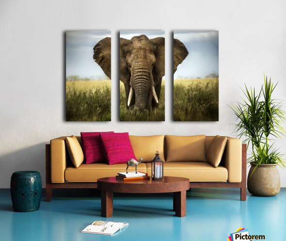 Encounters in Serengeti Split Canvas print