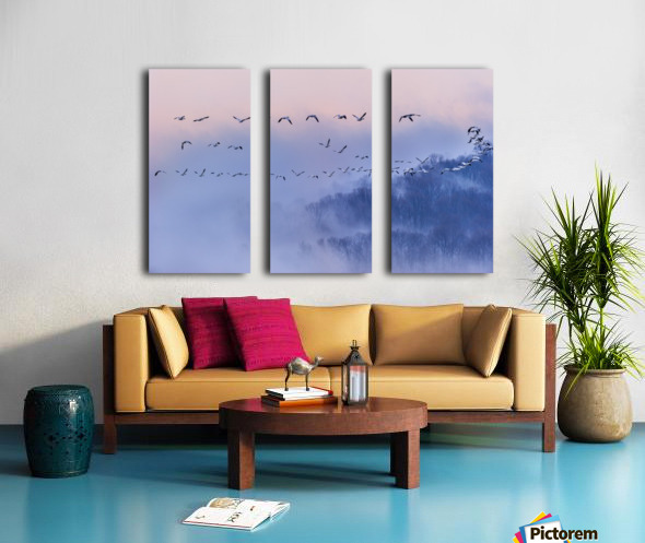 Snow Geese Split Canvas print