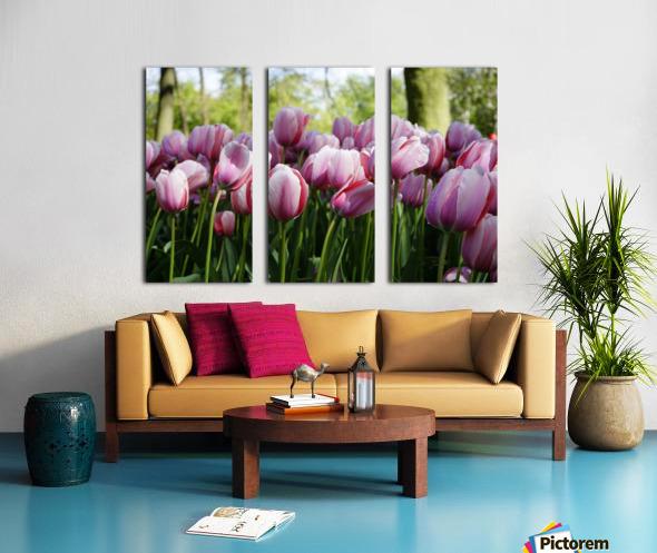 Pink & White Split Canvas print