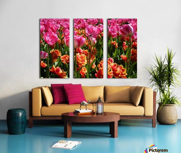 Pink & Orange Split Canvas print
