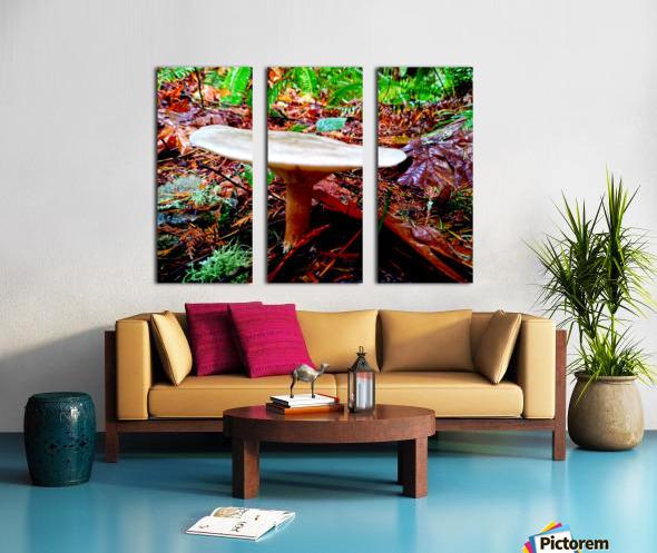Tiny World 4 of 8 - Mushrooms and Fungi Split Canvas print