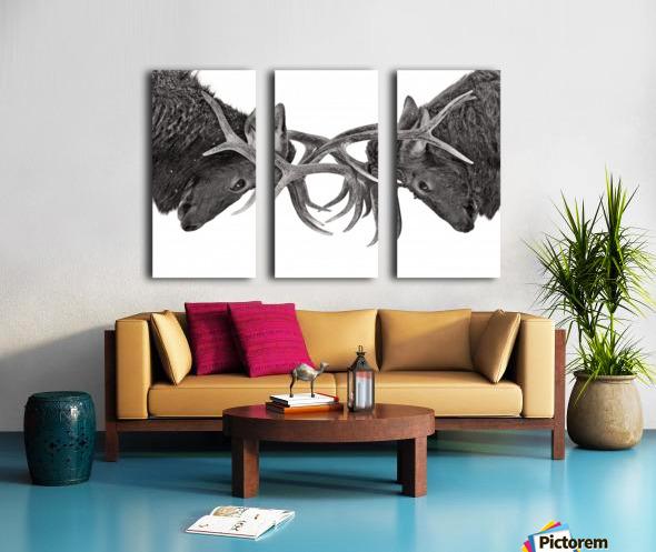 Eye to Eye Split Canvas print