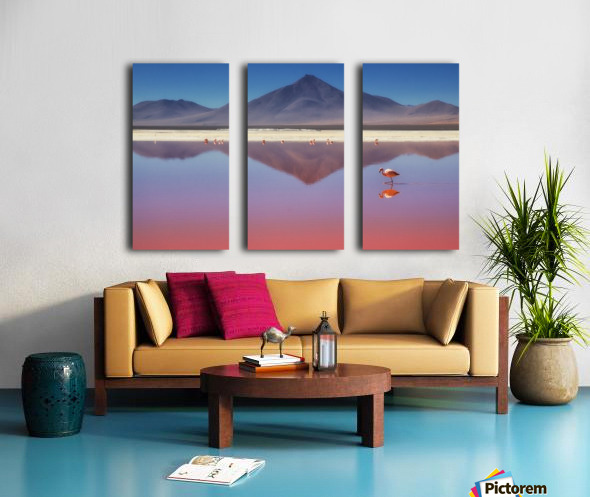 Pink Morning Split Canvas print