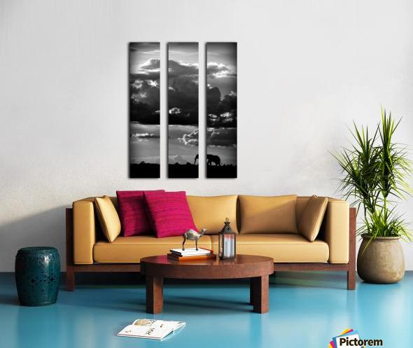 He walks under an African Sky by WildPhotoArt   Split Canvas print
