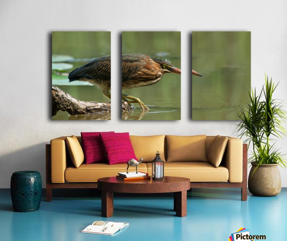 Wading Into The Unknown Split Canvas print