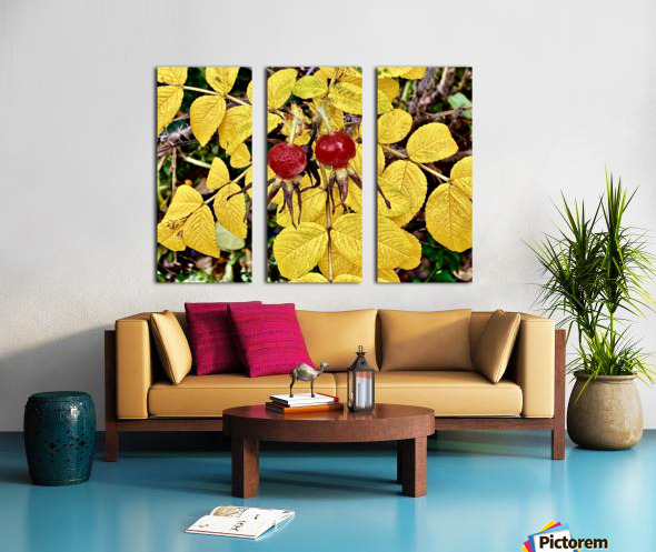 Two Red Berries Split Canvas print