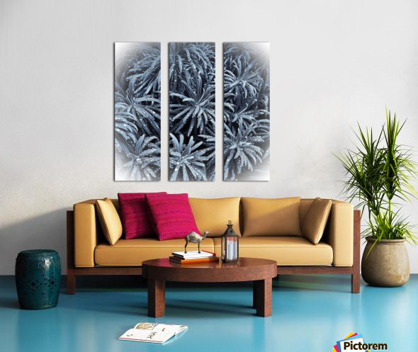 E2D99D0A F40D 4096 A2D3 8F4DDE8C0F33 Split Canvas print