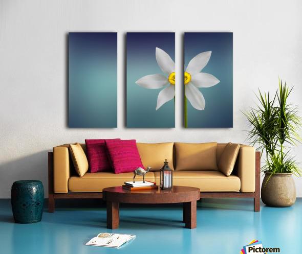 Flower of Paradise by Bess Hamiti  Split Canvas print