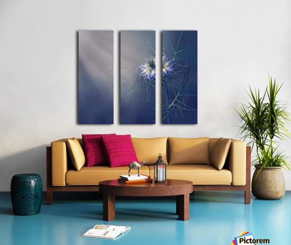 ....* Split Canvas print