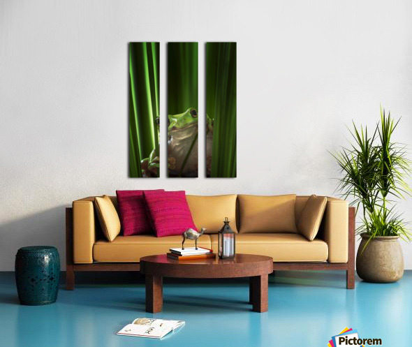 Green Frog Split Canvas print