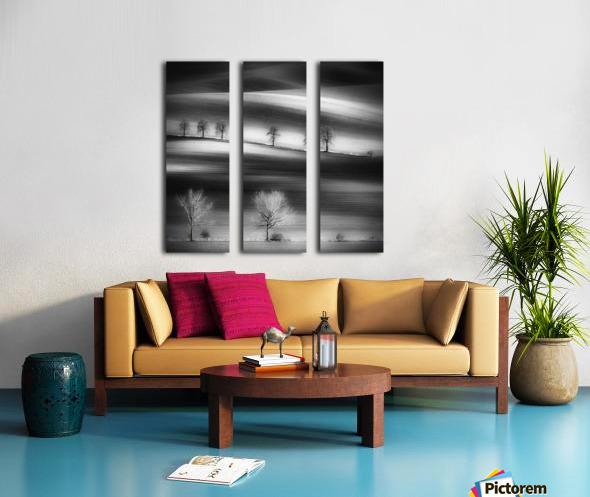 Trees Split Canvas print