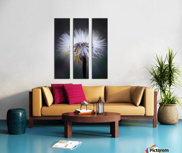 Cheveux d ange Split Canvas print