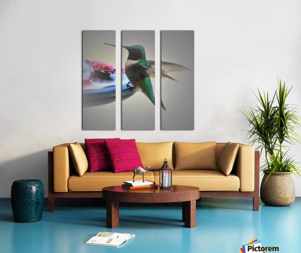 Colibris Split Canvas print