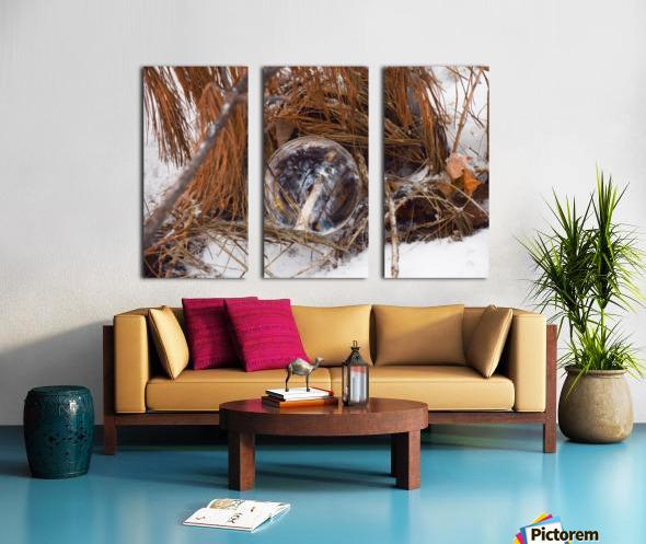 Refuge Split Canvas print