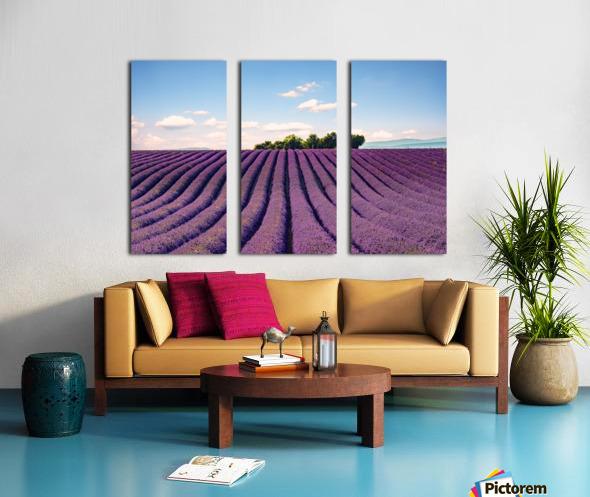 The Valensole plateau Split Canvas print