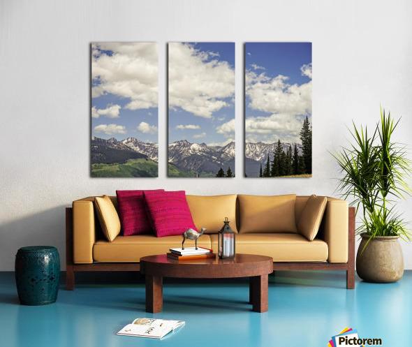 Back Country Colorado 5 of 8 Split Canvas print