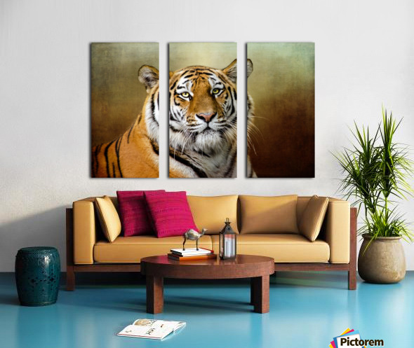 Bengal Tiger Split Canvas print