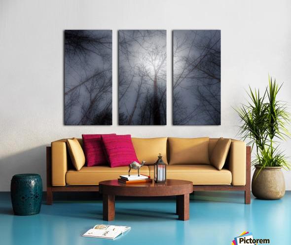 Espoir Split Canvas print