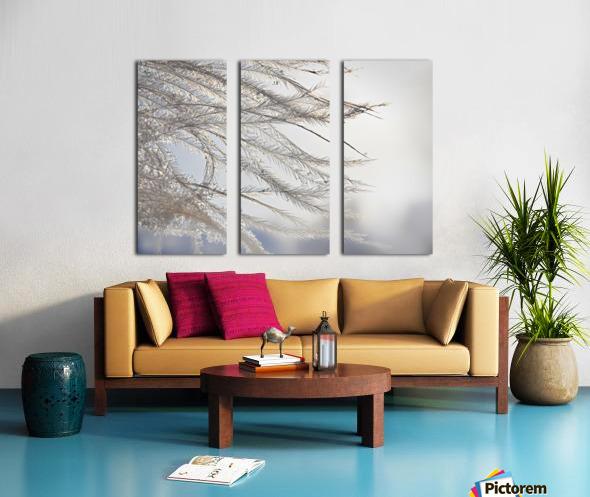 Plumeau Split Canvas print