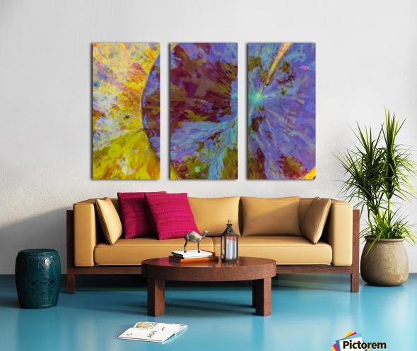 Colors Of Nature ap 2038 Split Canvas print
