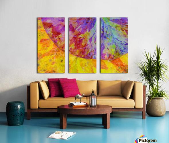Colors Of Nature ap 2037 Split Canvas print