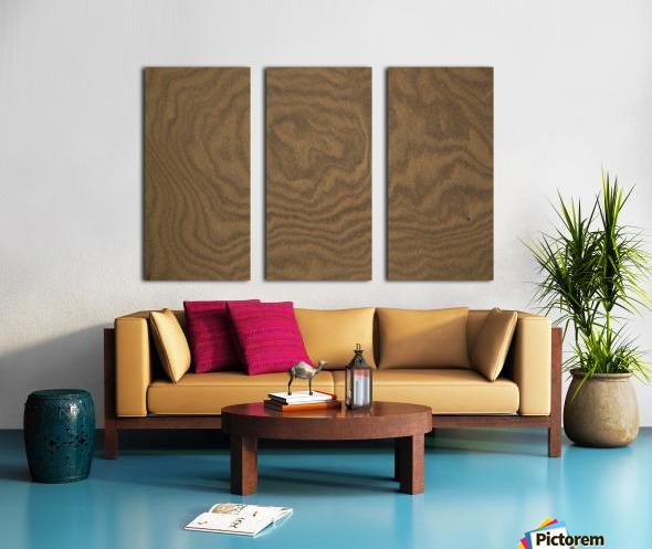Patterns Of Nature ap 2120 Split Canvas print