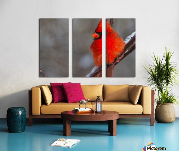 Cardinal ap 1866 Split Canvas print