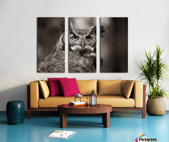 Great Horned Owl ap 2860 B&W Split Canvas print