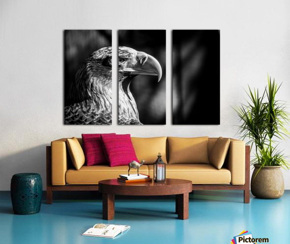 Eagle ap 2046 B&W Split Canvas print
