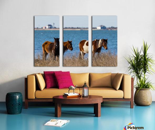 Wild Horses ap 2796 Split Canvas print