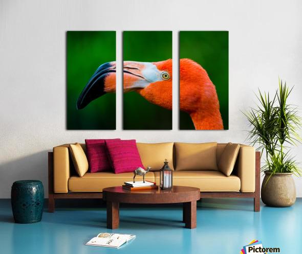 Flamingo Portrait ap 1946 Toile Multi-Panneaux