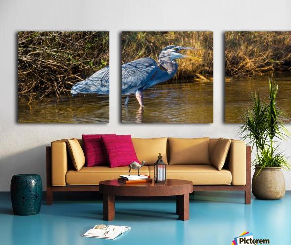 Great Blue Heron ap 2133 Split Canvas print